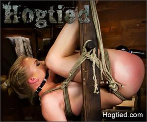 hogtied.com