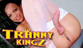 Tranny Kingz Channel