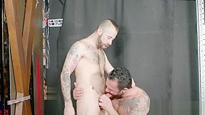gay N41...