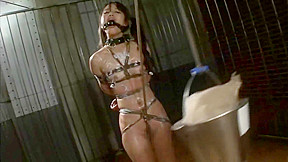 Asian cunt suzu wakana gets bondage tortured and...