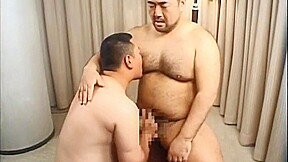 Hairy bear japanese02...