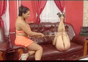 Freaks of Nature 146 Cuties Hard Caning