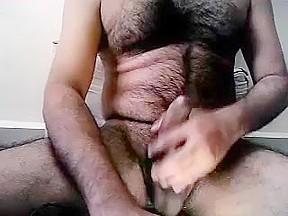 Bear 3...