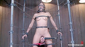 Immobilized...