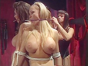 Horny pornstars shay sights and in amazing porn...
