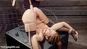 Bdsm Anal Squirting Orgasmus