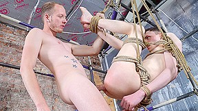 Twink Hole Fully Dominated - Aaron Aurora Sean Taylor - Boynapped