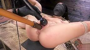 Hog tied...