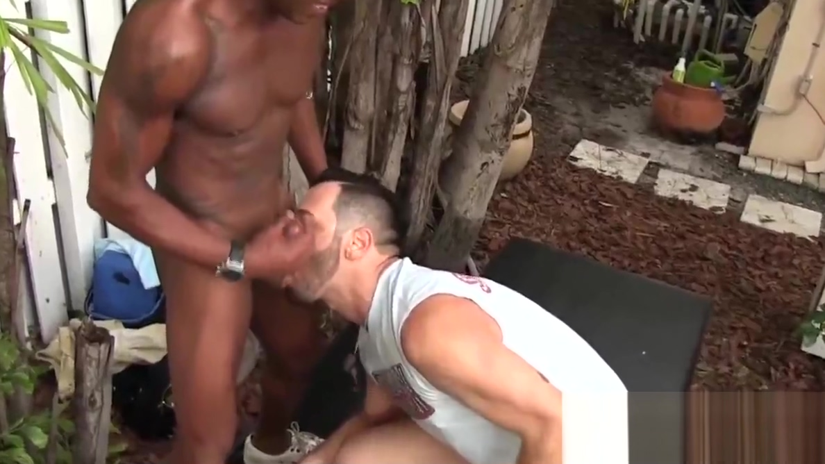 Black stallion dicks and creampies cock hungry white guy Swinger movie galeries