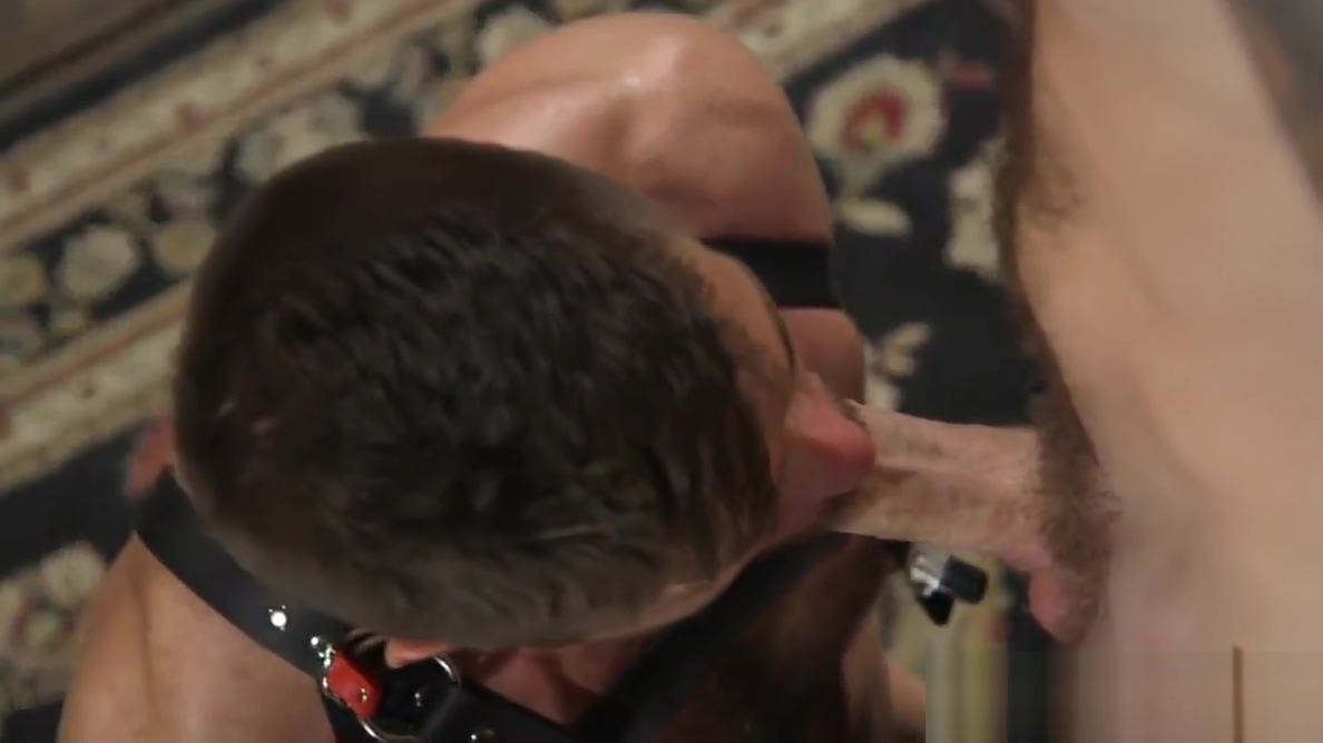 Muscled bdsm dom cocksucked by buff sub nude girls at octoberfest