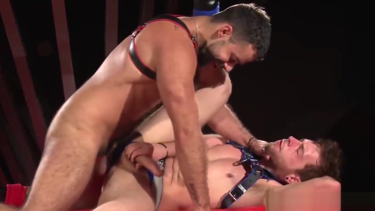 TEDDY TORRES rear entry sexual position