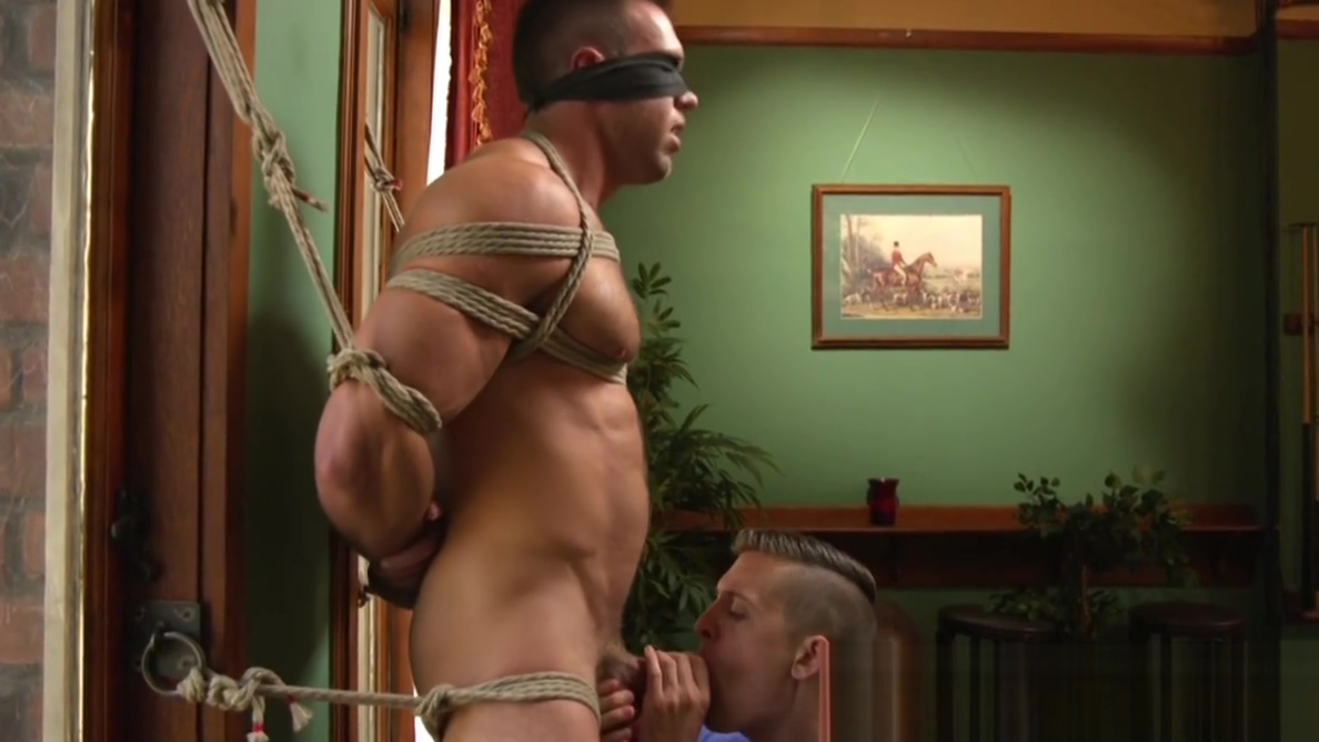 Boxtied edging sub restrained for wanking Who is ct on the challenge hookup divas birthday
