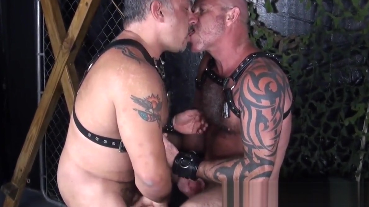 Tattooed mature bear barebacked after bj Asian public tube