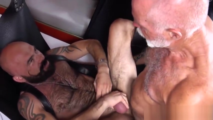 Polar bear plowing tight hunk ass bareback Cougar deepthroat flix
