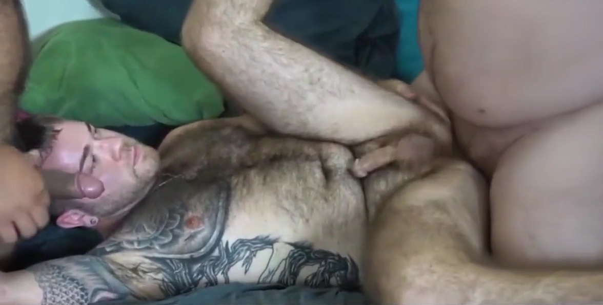 Gay bears!! Free sex gay 18