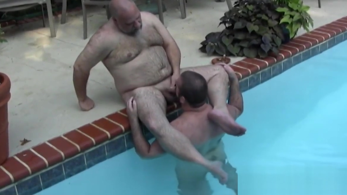 Polar bear cocksucked in the pool How much do sex line workers get paid