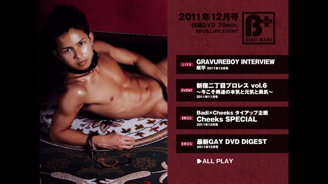 Disc BAdi 2011-12 34cc tits