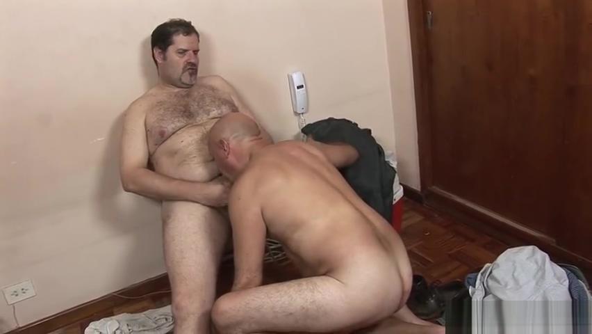 bigger bear y el electricista Swingerlifestyle com login