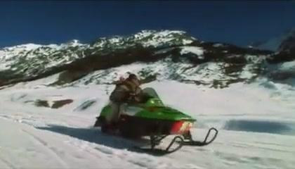 LILIANE TIGER: #37 Snow Angels