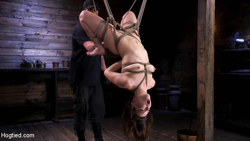 Anal Domination Training - HogTied Assup Face Down