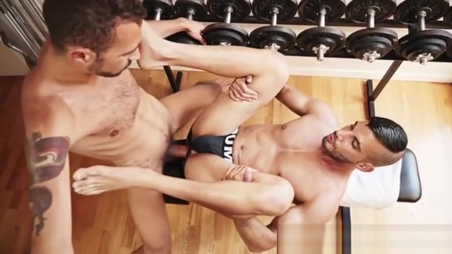 Hot Horse Cock fucks Gay ass in the gym Gay porn 27732 at Mo Favorite nude black boobs