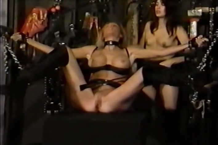Smacked Ass Pains & Pleasures Alexis love fucking gifs