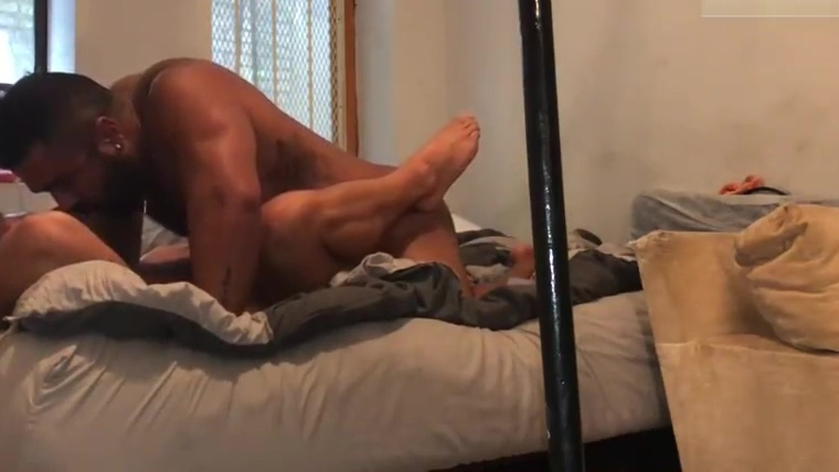 Only fans - Ursos trepando Iam south carolina