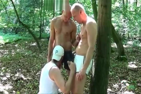 drei freunde Gay cock sucking and eating cum