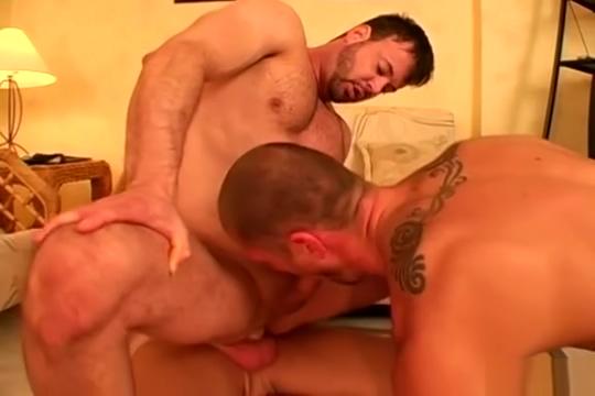 Wrestling Bear 3some Goku Gay Sex