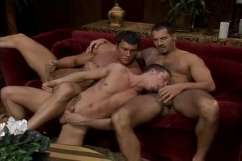 Sweaty Muscle Prince Bodyguard Fuck Twink danni rachel love legs nipples imagewallpaper downloads jpg 1