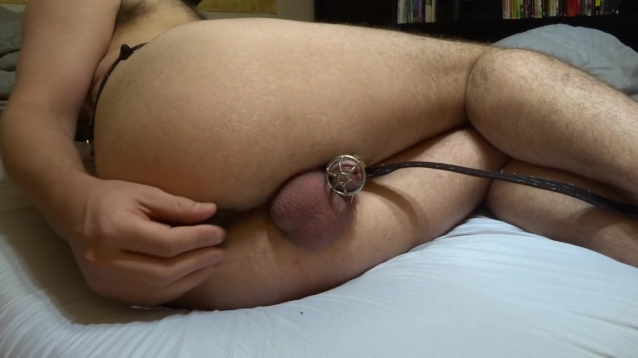 Milking prostate with huge balls in chastity Sex in london now