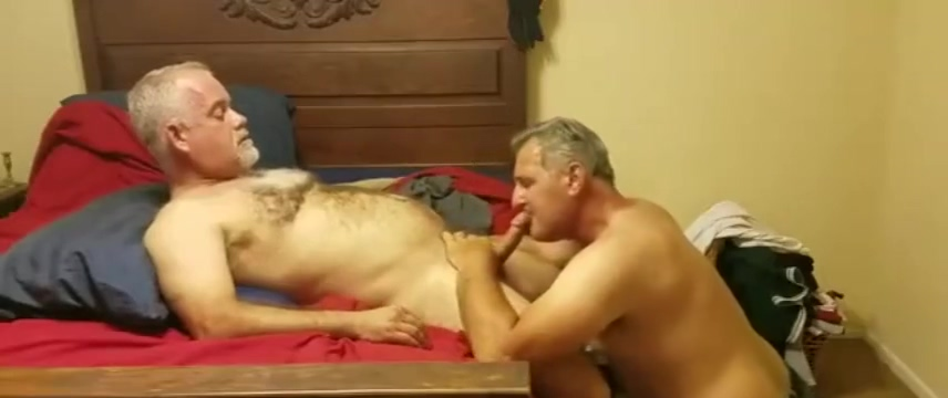 We collected for you best of Whaletail videos on this page