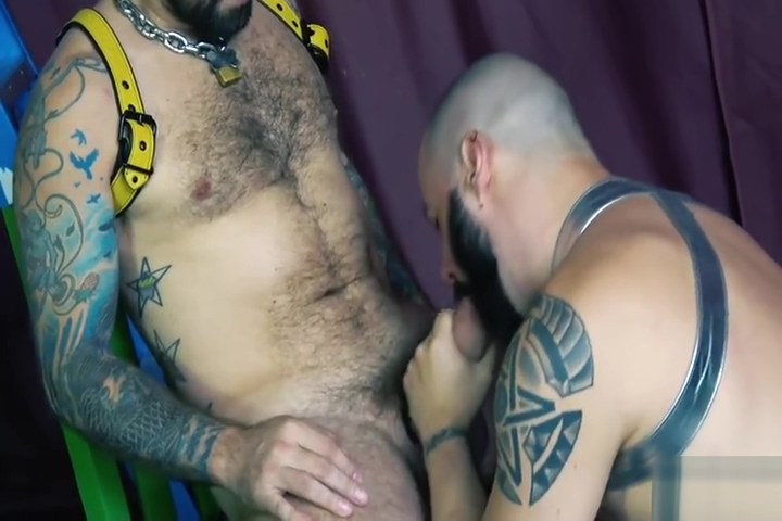 Jon Shield and John Lock Two Sweaty Muscle Bears Horny girls willing to bare everything for cash