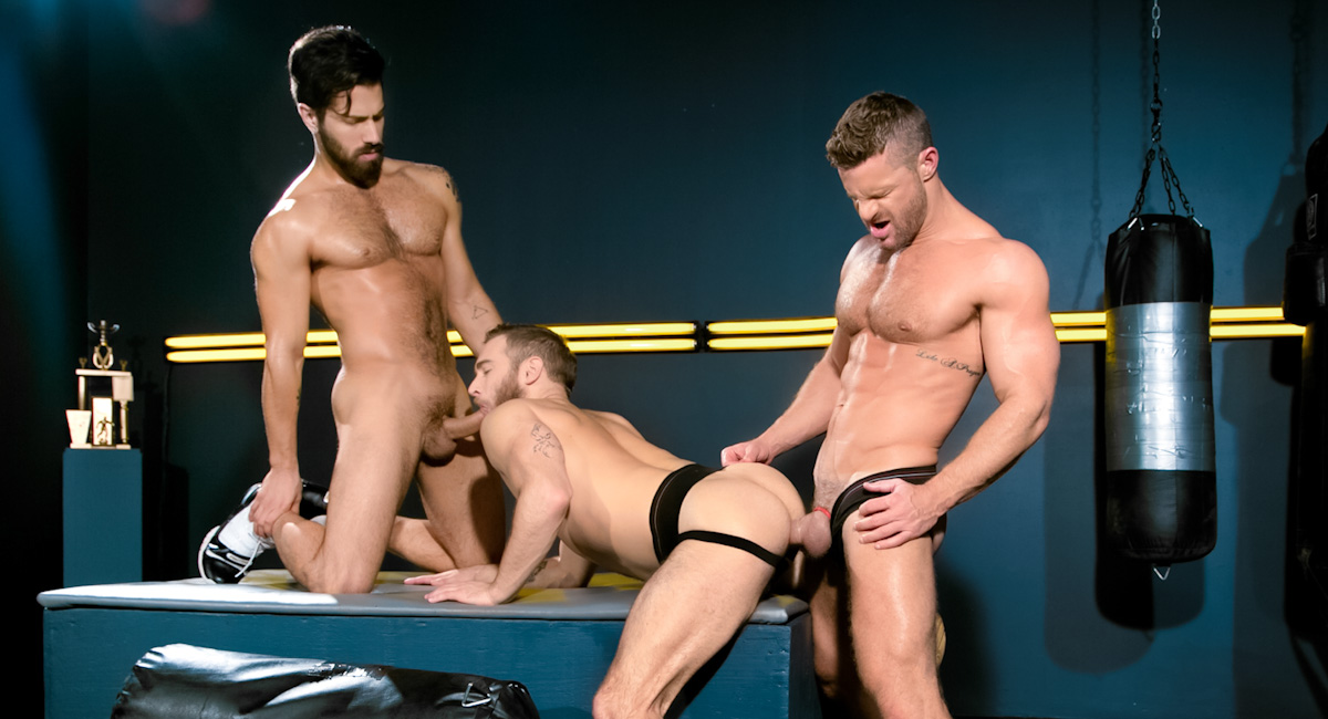 Shawn Wolfe & Landon Conrad & Adam Ramzi in Cock Fight! Ultimate Showdown Video co ed confidential tv show episodes free online
