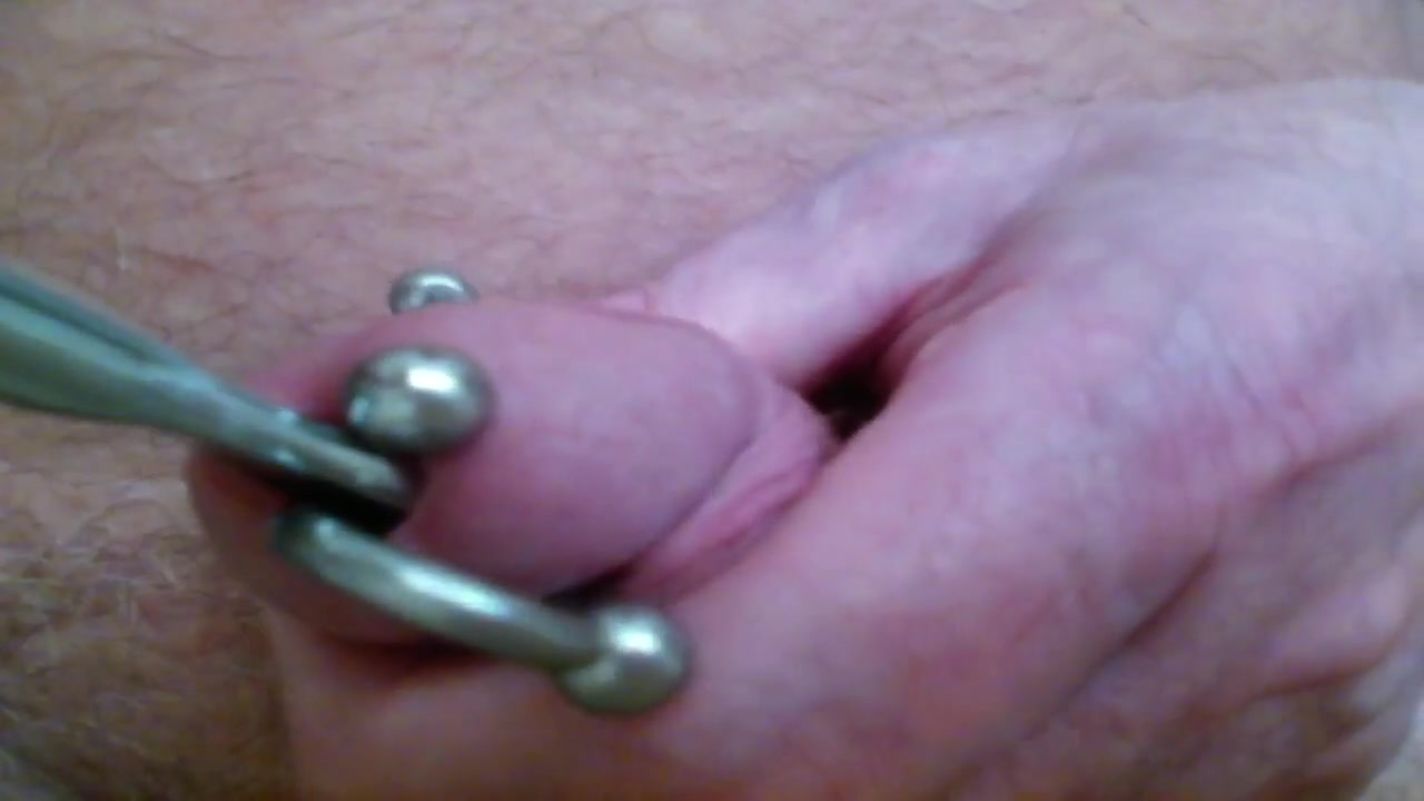 8 inchDildo fuck n cum Cat lover dating video introduction clips