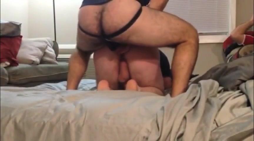 BEARS RUGBY Pornheed Com