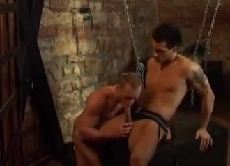 Up in the cell Arab sex tube video