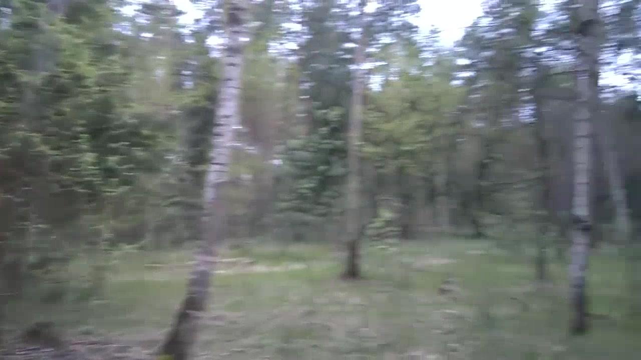Forest Blowjob with cum swallow Men wearing women pantys