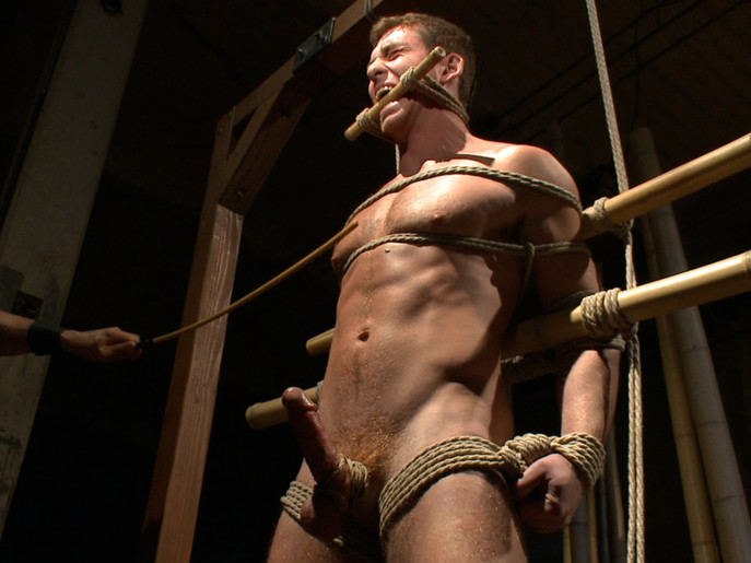 House Dom Connor Maguire - Extreme Torment and Ass Violation Fwb personals in Roll