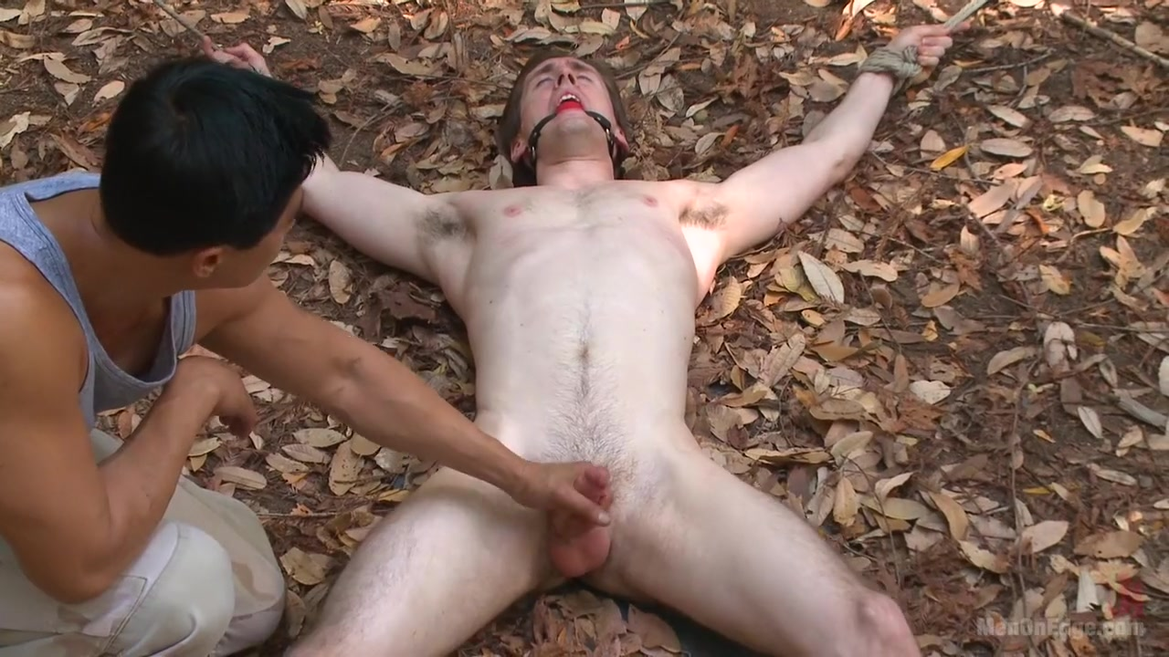 Bi stud bound and edged in the forrest We cannot serve two masters