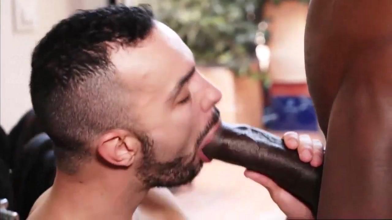 Fucked big black meat. Felicity kendal huffman hot milf