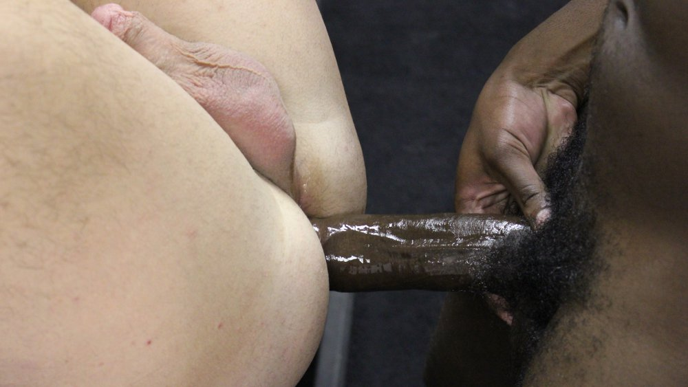 James Django and Chip Young - BreedMeRaw Shemale and lesbian sex