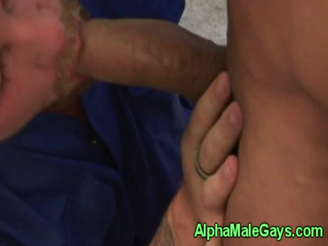 Gay stud rimming and fucking pals ass stevie louise ritchie video