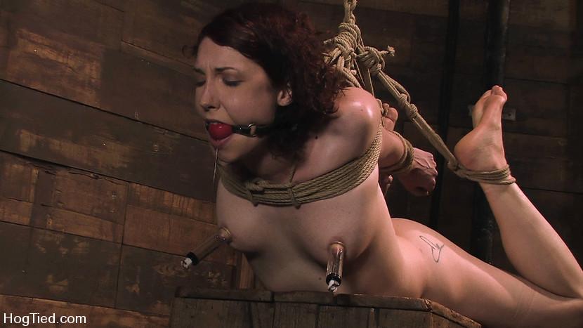 Carmen Stark in Carmen... Anal Whore With A Flair - HogTied Tall ebony pussy