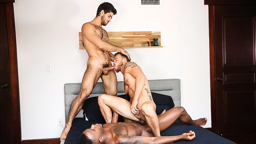 Diego Sans Max Wilde Phoenix Fellington in Tre Sesso - GodsOfMen male multiple handjob cumshots