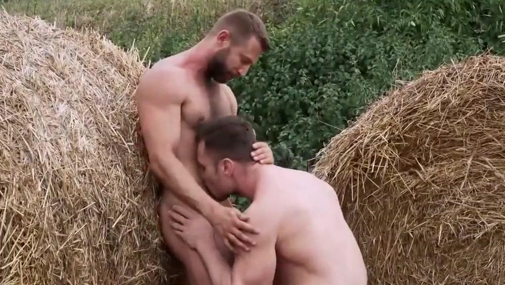 Farm fuck chivalry of a failed knight english dub
