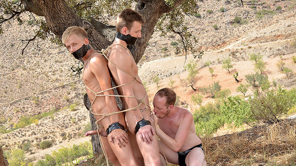 2 Young Captive Cocks To Use - Chris Jansen, Reece Bentley Sean Taylor - Boynapped What does wuv mean in texting