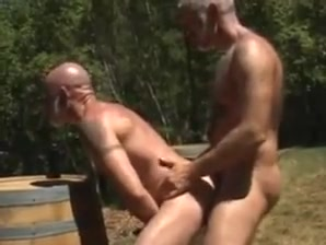 Bears in the forest i got a blowjob for free