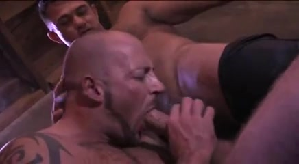 Muscle bear for leather Men boys asian tumblr porn