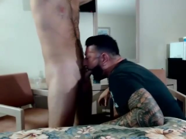Hot Hairy Bros Jerking Off On Cam the joy of sex photos